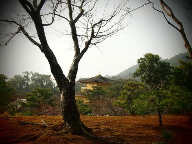 19-kyoto-temple-dor