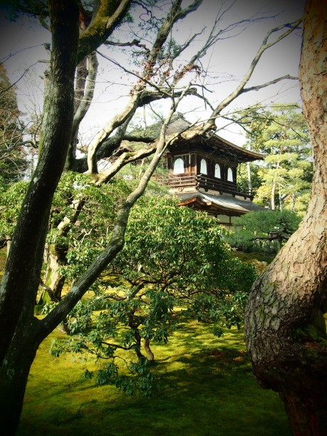 21-kyoto-temple-dargent
