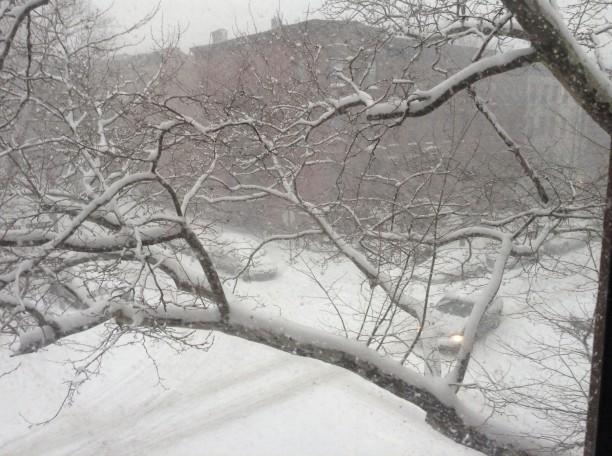tempete-de-neige1